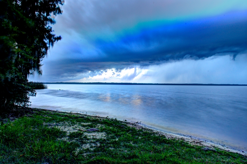 Newnans Lake view SW color 2015.jpg